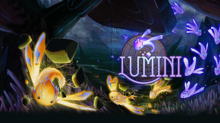 Lumini_20200124122451 copy.jpg